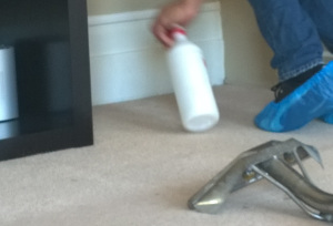 carpet cleaning North End DA8