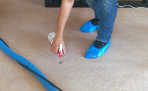 carpet cleaning Queens Park W9