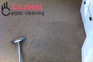 Skilled carpet cleaners