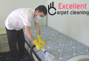 Trained upholstery cleaners